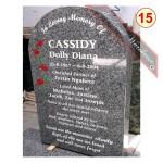 15 Cassidy